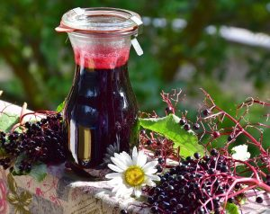 Elderberries contain high levels of A, B, and C vitamins. Make them into a syrup to stimulate the immune system and help with cold and flu prevention.